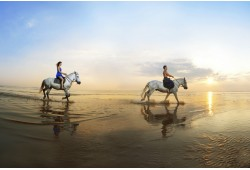 Romantiškas pasijodinėjimas žirgais pajūryje
