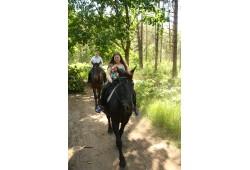 Izjāde ar zirgu un fotosesija