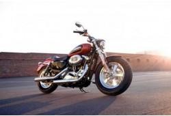 """Pasivažinėjimas galingu """"Harley-Davidson"""" motociklu"""