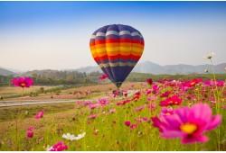 VIP skrydis oro balionu Šiauliuose 3-4 asmenims