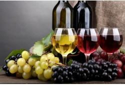 Vyno ir šokolado degustacija dviems su D. Velička