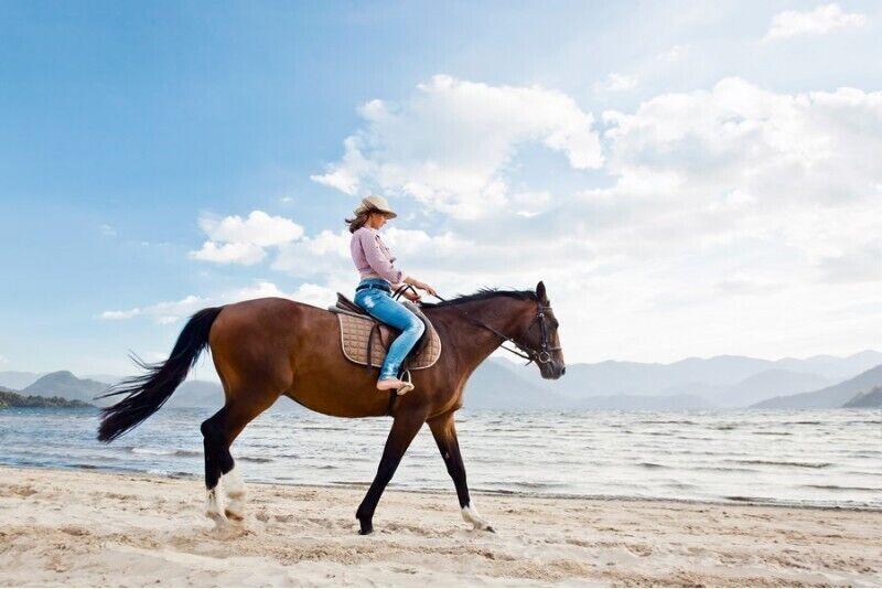 Pasijodinėjimas žirgu pajūryje
