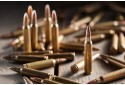 """Šaudymo koviniais ginklais pamoka """"Hobio centre"""" Klaipėdoje"""