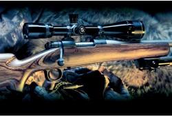 Šaudymas į nejudančius taikinius lygiavamzdžiu šautuvu