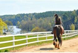 Pasijodinėjimas žirgais laukia arba manieže Dubingių žirgyne