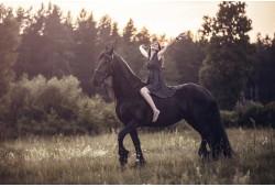 Nuostabi fotosesija su Fryzų veislės žirgu