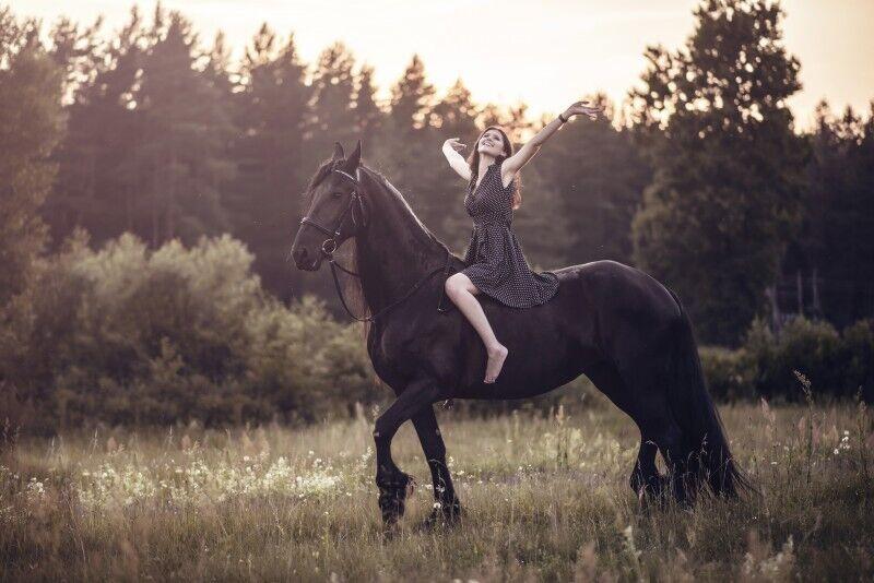Nuostabi fotosesija su Fryzų veislės žirgu Vilniaus apylinkėse