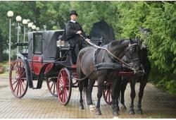 Pasivažinėjimas su žirgų kinkiniu Alytuje