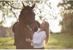 Profesionali fotosesija su žirgais ir fotografu Kurtuvėnų regioninį parką