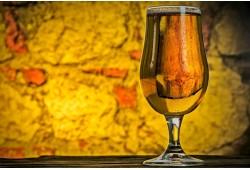 Edukacinė alaus pažinimo pamoka Vilniuje