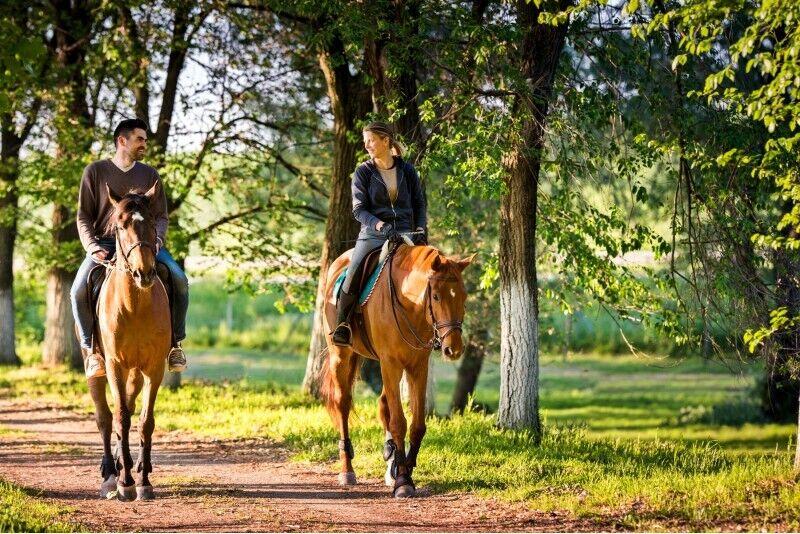 Jodinėjimas žirgais dviem po Anykščių apylinkes