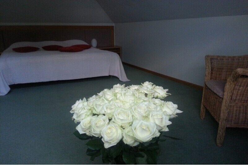 Poilsis liukso klasės kambaryje dviem Siguldoje
