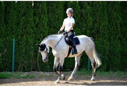 """Pasijodinėjimas žirgu su """"Laisvalaikio žirgais"""" 1-3 asmenims"""