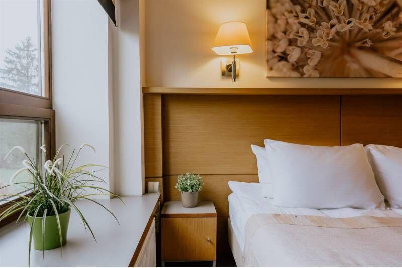 """2 nakvynių poilsis su vakariene dviem viešbutyje """"De Lita"""""""