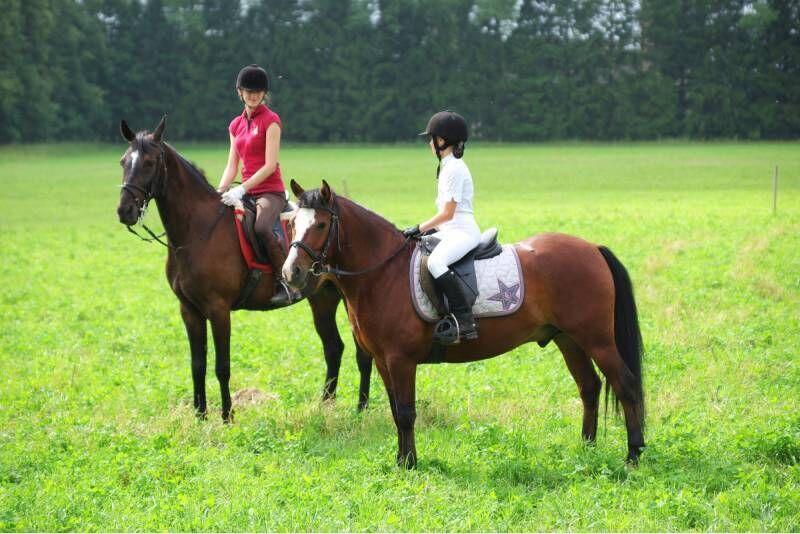 Jodinėjimo pamoka jaunimui Rietavo žirgyne