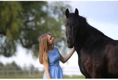 Jodinėjimas žirgais aikštelėje arba manieže 1 asmeniui
