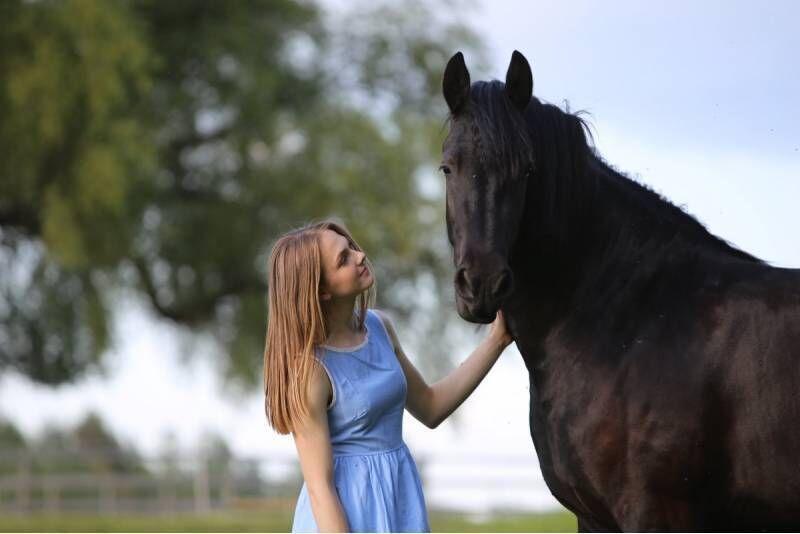Jodinėjimas žirgu aikštelėje arba manieže 1 asmeniui