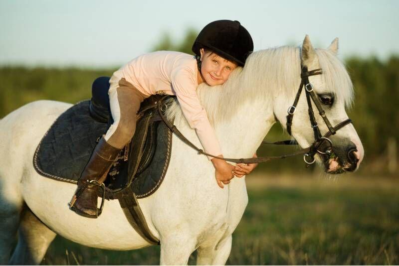 Jodinėjimas poniu vaikui Vilniuje