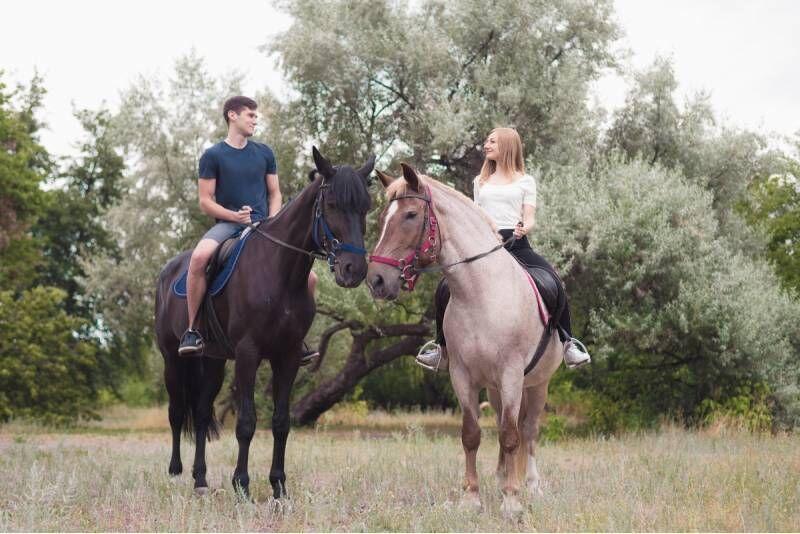 Pasijodinėjimas žirgais Alytaus rajono apylinkėse