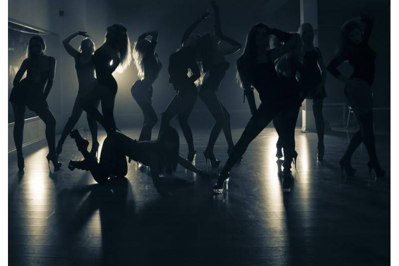 "Privati ""pole dance"" šokių pamoka kompanijai Rygoje"