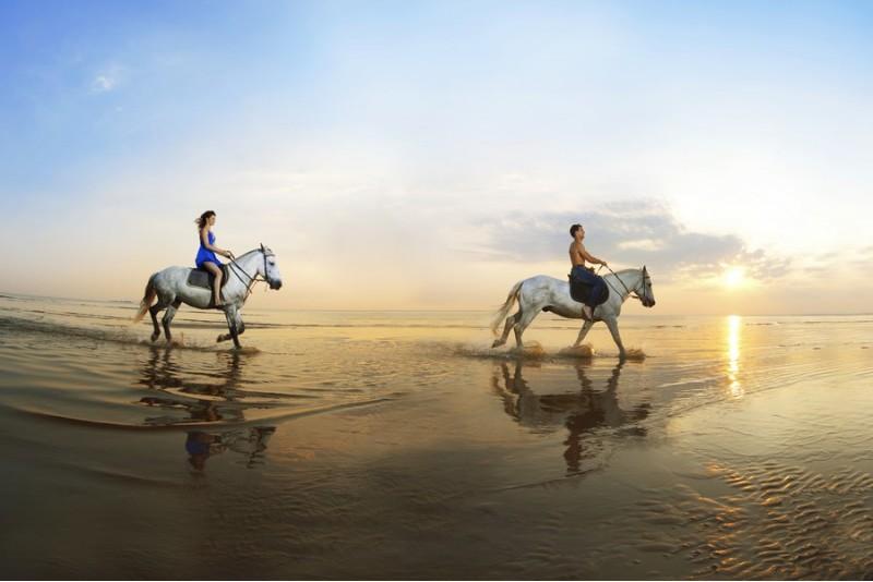 romantiskas-pasijodinejimas-zirgais-paju